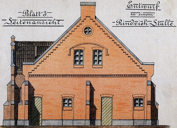 Rindviehstall-Seite