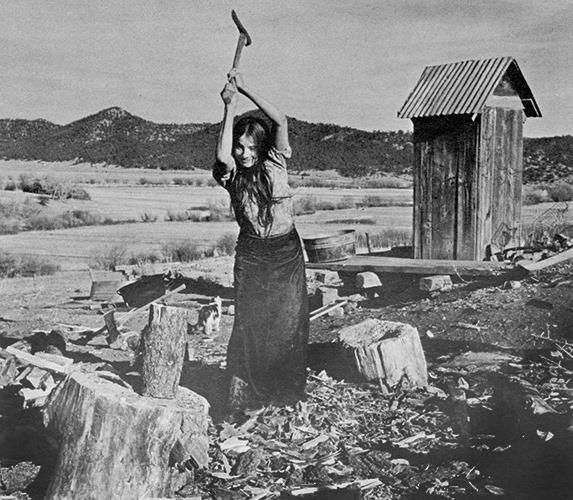 Termiten Im Haus: Memoiren Eines Waldschrats